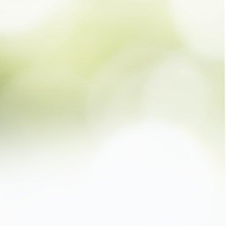 half-white-mobile-background.jpg